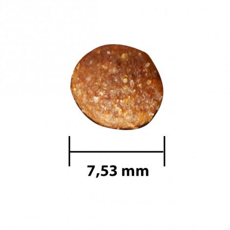 DogPlus Yavru Köpekler İçin Kuzu Etli - Pirinçli Mama (3,00 KG X 2)