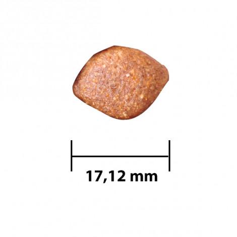 DogPlus Yetişkin Köpekler İçin Kuzu Etli - Pirinçli Mama (3,00 KG X 2)
